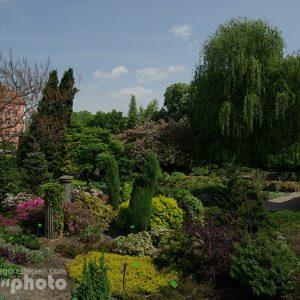 pgrod-botaniczny-IMGP9736